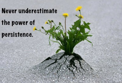 4 Steps to Mastering Persistence